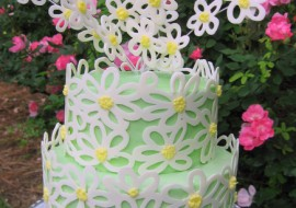 Learn to make a beautiful Piped Daisy Chocolate Wrap in this My Cake School video tutorial!