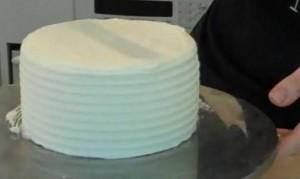 Cakecomb100927-AM