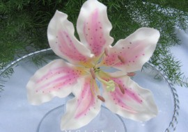 Beautiful gum paste Stargazer Lily! A member cake video tutorial on MyCakeSchool.com!