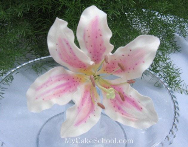 Beautiful gum paste Stargazer Lily! A member cake video tutorial on MyCakeSchool.com!