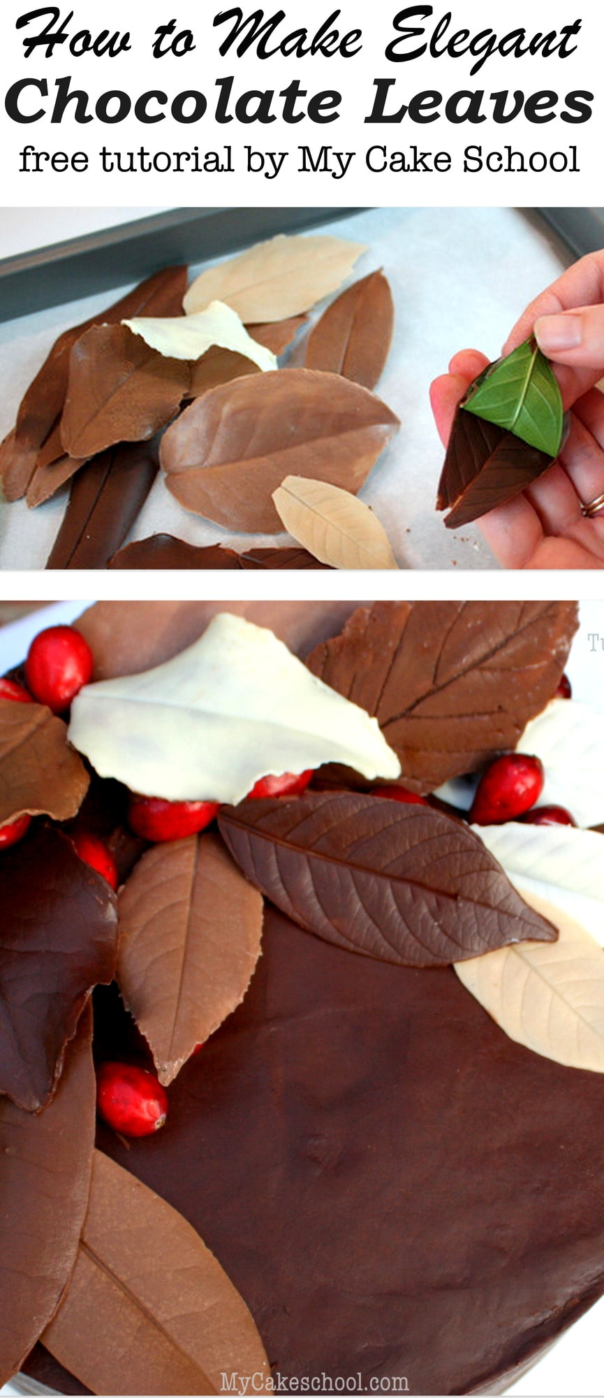 Learn how to make elegant chocolate leaves in this free cake decorating tutorial by MyCakeSchool.com! This is the perfect cake decoration for your fall and Thanksgiving cakes and cupcakes!