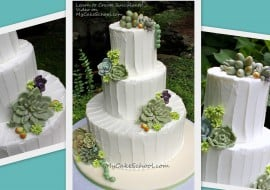 succulents-collage