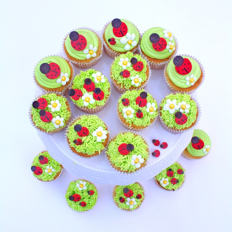 Adorable Ladybug Cupcakes! Simple and sweet step by step cupcake tutorial for cheerful ladybug cupcakes!