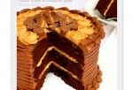 Peanut Butter and Chocolate Cake Recipe-MyCakeSchool.com