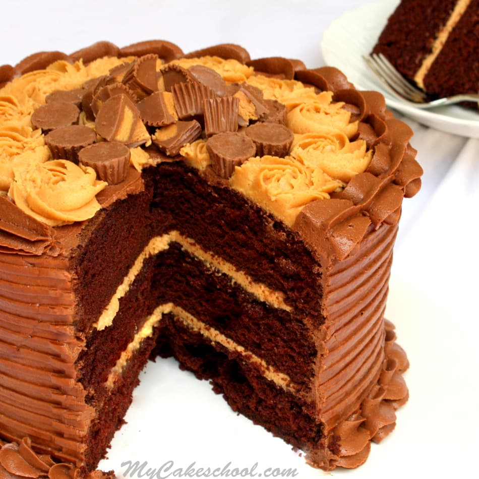 Peanut Butter & Chocolate Cake Recipe- MyCakeSchool.com