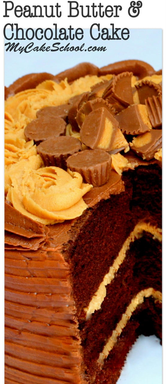Moist and delicious Peanut Butter and Chocolate Cake Recipe by MyCakeSchool.com! Amazing chocolate cake layers with peanut butter buttercream and chocolate buttercream. My Cake School Online Cake Recipes, cake tutorials, and more!