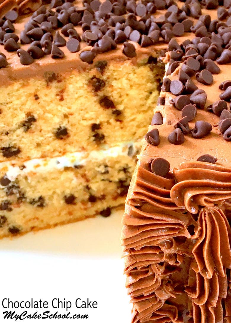 Moist and Delicious Chocolate Chip Cake Recipe by MyCakeSchool.com!