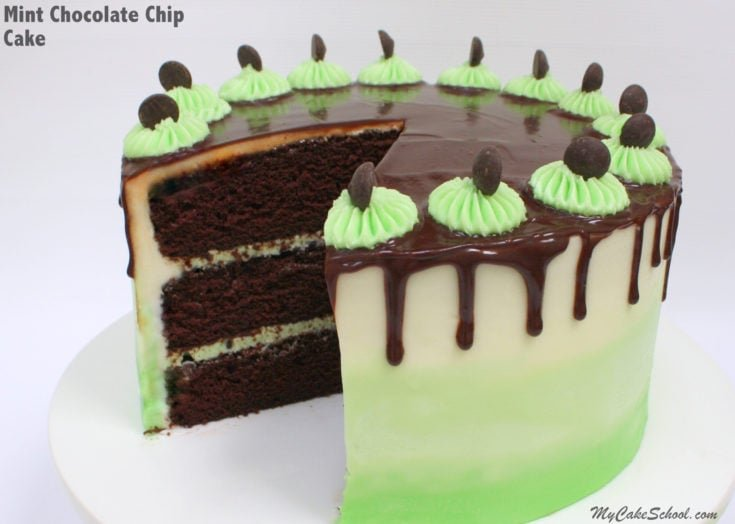 Moist and Decadent Mint Chocolate Chip Cake Recipe by MyCakeSchool.com! Rich Chocolate Cake Layers with Refreshing Mint Chocolate Chip Buttercream!