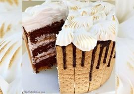 Amazing S'mores Cake Recipe by MyCakeSchool.com! A heavenly combination of chocolate, graham crackers, and a marshmallowy frosting!