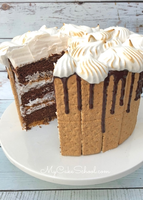 Amazing Homemade S'mores Cake Recipe by MyCakeSchool.com