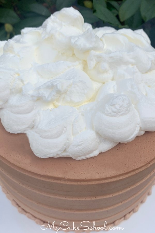 Hot Chocolate Layer Cake topped with Whipped Cream!
