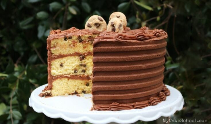Chocolate Chip Cake Mix Recipe