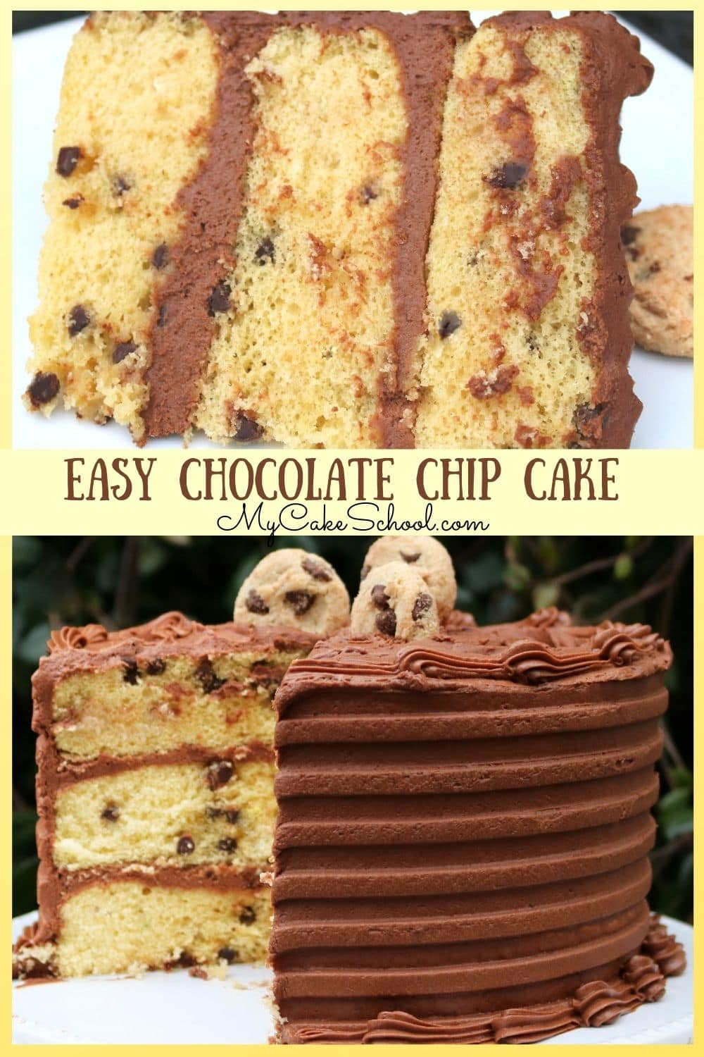 Easy Chocolate Chip Cake- Doctored Cake Mix